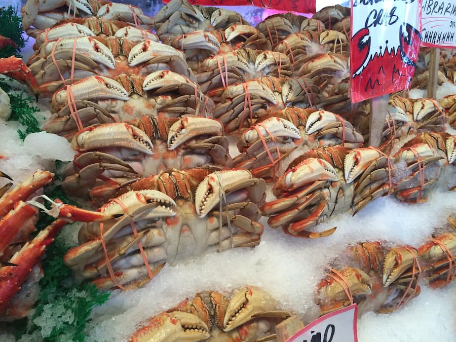 cold chain efficiency frozen seafood